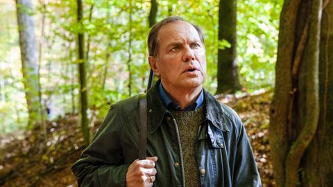 Wolfram (Uwe Ochsenknecht) läuft durch einen Wald.