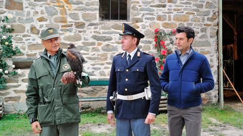 Zum Ärger von Kommissar Vincenzo (Enrico Janniello, re. ) ist das Falkenweibchen Veronica von seinem Besitzer nicht abgeholt worden. Aber Pietro (Terence Hill, li.) weiß, dass der Vogel ihn finden wird und ein weiteres Unglück verhindert werden kann.