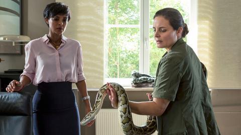 Tierärztin Susanne Mertens (Elisabeth Lanz, r.) geht auch mit Python Donald professionell und gelassen um. Zoodirektorin Amal Bekele (Dennenesch Zoudé, l.) freut sich über die Nähe zum Tier überhaupt nicht, was Susanne natürlich bemerkt hat.
