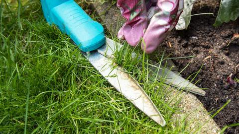 Eine Frau trimmt mit einer Grasschere und Gartenhandschuhen den Rasen.