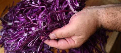 Zubereitung eines Rotkohls - nach dem Vierteln und dem Entfernen der Strünke, schneidet man die Viertel in Streifen.