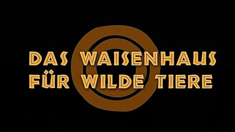Waisenhaus für wilde Tiere Logo