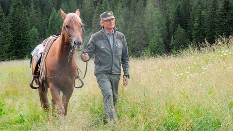 Forstkommandant Pietro (Terence Hill) ist glücklich, dass seine Suspendierung am Ende aufgehoben wurde. Jetzt kann er wieder die Wälder rund um Innichen durchstreifen.