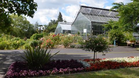Der Botanische Garten mit seinen Gewächshäusern.
