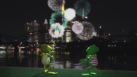 Fridolin und Kröti beim Feuerwerk am Mainufer