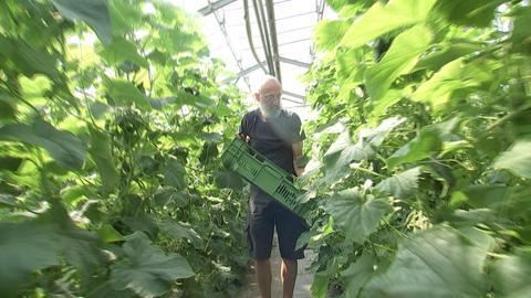 Gemüse Oberrad