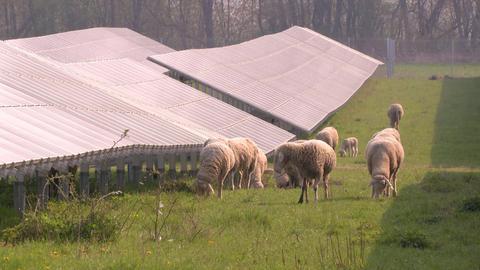 Klimarundweg Wölfersheim
