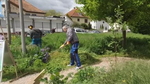 Lotto GENAU bienenfreundliche Grünanlage Trebur