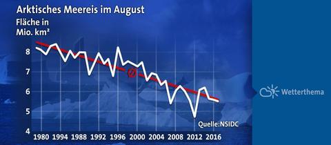 Arktisches Meereis im August
