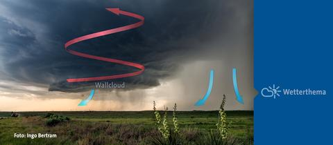 wallcloud