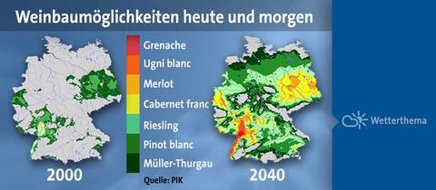 Weinbau und Klimaandel