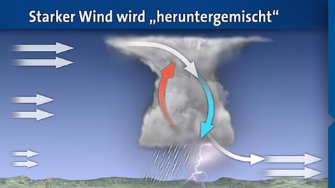 windboeen