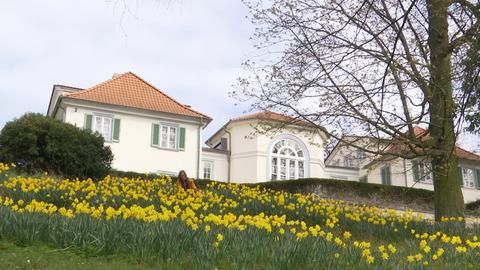 Park Schönfeld