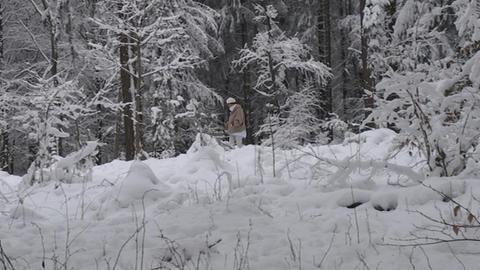 Schneebruch