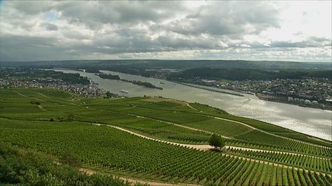 Rhein bei Rüdesheim Rheingau