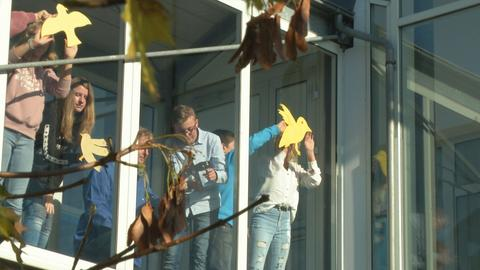 Burgwaldschule Frankenberg Glasfassade Vögel