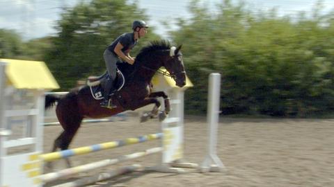 Berufsreiter Stefan Eckel auf Pferd