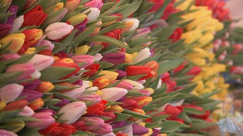 Blumenhandel