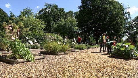 Lehr- und Kräutergarten Dreieich
