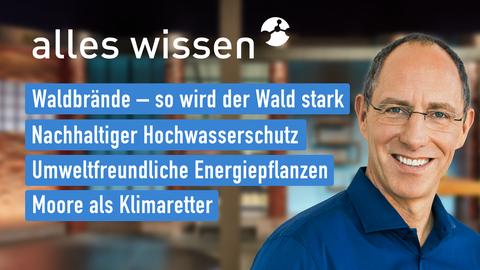 """Thomas Ranft und die Themen bei """"maintower"""" am 28. Oktober: Walsbrände – so wird der Wald stark, Nachhaltiger Hochwaserschutz, Umweltfreundliche Energiepflanzen, Moore als Klimaretter"""