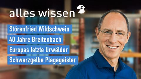 Themen sind u.a.: Störenfried Wildschwein, 40 Jahre Breitenbach, Europas letzte Urwälder, Schwarzgelbe Plagegeister.