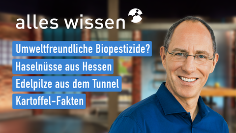 Themen sind: Umweltfreundliche Biopestizide, Haselnüsse aus Hessen, Edlepilze aus dem Tunnel, Kartoffel-Fakten.