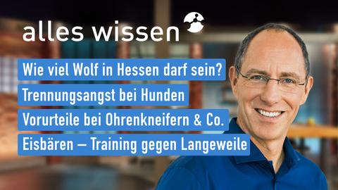 Themen sind u.a.: Wie viel Wolf in Hessen darf sein?, Trennungsangst bei Hunden, Vorurteile bei Ohrenkneifern & Co., Eisbären – Training gegen Langeweile.