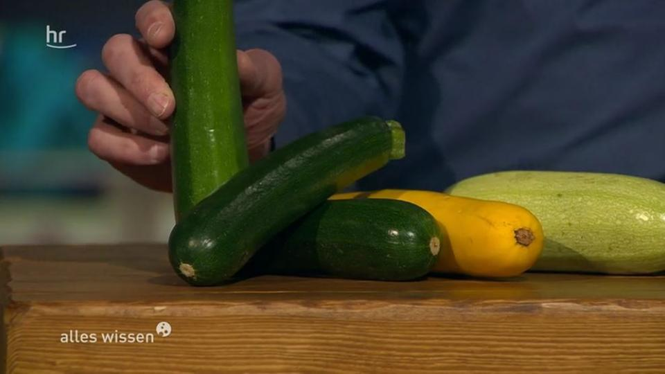 video infoblock giftige zucchini hr sendungen. Black Bedroom Furniture Sets. Home Design Ideas