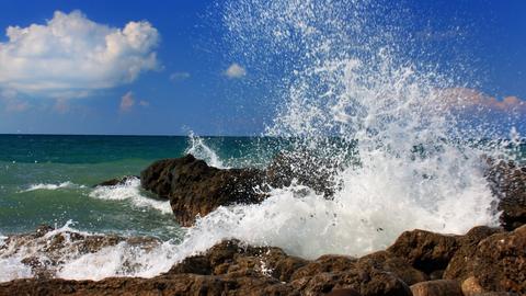 Brechende Wellen an der Küste