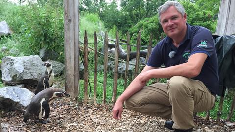 Christian Schultenkämper mit Pinguinen aus dem Tierpark Sababurg