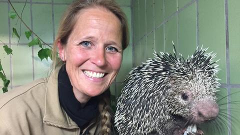 Die Tierärztin aus dem Frankfurter Zoo: Dr. Nicole Schauerte mit einem Greifstachler