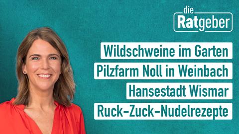 Die Ratgeber am 26.09.2019 - mit Anne Brüning