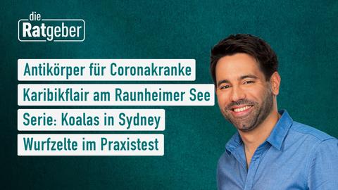 Themen sind: Antikörper für Coronakranke, Karibikflair am Raunheimer See, Serie: Koalas in Sydney, Wurfzelte im Praxistest.