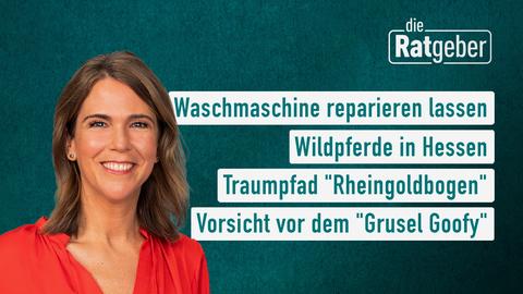 """Themen sind: Waschmaschine reparieren lassen, Wildpferde in Hessen, Traumpfad """"Rheingoldbogen"""", Vorsicht vor dem """"Grusel Goofy""""."""