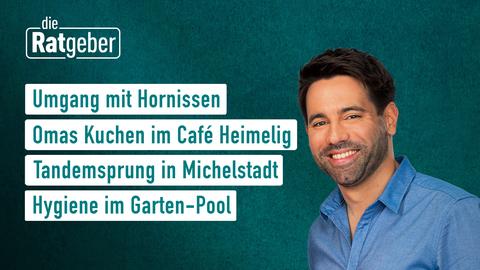 Themen sind u.a.: Umgang mit Hornissen, Tandemsprung in Michelstadt, Hygiene im Garten-Pool, Wohin mit der Maske?
