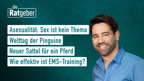 Themen sind u.a.: Asexualität: Sex ist kein Thema, Welttag der Pinguine, Neuer Sattel für ein Pferd, Wie effektiv ist EMS-Training?.