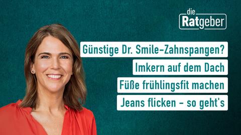 Themen sind: Günstige Dr. Smile-Zahnspangen?, Imkern auf dem Dach, Füße frühlingsfit machen, Gut ausgeleuchtet in Videokonferenzen.