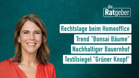 """Themen sind: Rechtslage beim Homeoffice, Trend """"Bonsai Bäume"""", Nachhaltiger Bauernhof, Textilsiegel """"Grüner Knopf""""."""