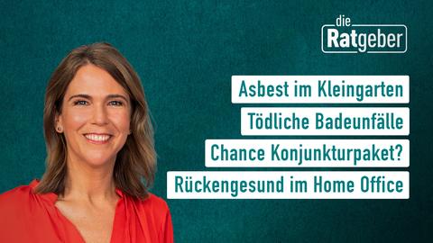 Themen sind u.a.: Asbest im Kleingarten, Tödliche Badeunfälle, Chance Konjunkturpaket?, Rückengesund im Homeoffice.
