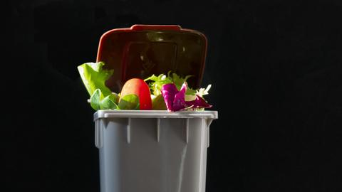 Ein Mülleimer voller Lebensmittel.