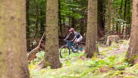 E-Mountainbikerin fährt durch den Wald.
