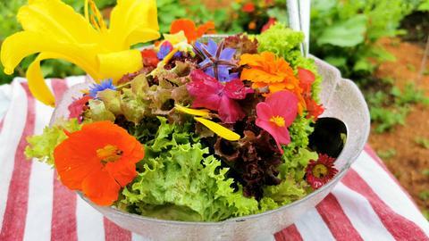 Essbare Blüten in einer Schale auf einem Tisch.