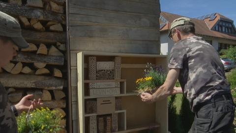Opa Stefan Heil und sein Enkel Levin bestücken das Insektenhotel mit Blumen und Pflanzen.