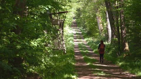 Eine Frau mit Rucksack läuft einen schattigen Waldweg entlang.
