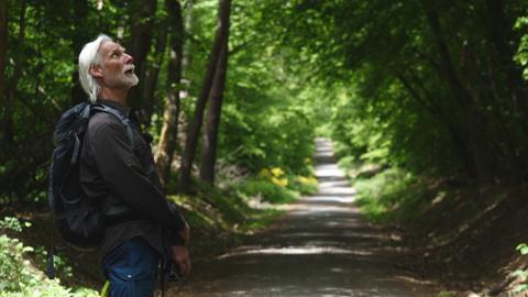 Ein grauhaariger Mann mit Bart steht im Wald und schaut zum Himmel hinauf.