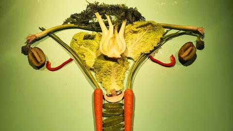 Die weiblichen Geschlechtsorgane gelegt aus Lebensmitteln.