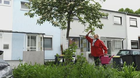 Protagonistin mit einer Gießkanne in der Hand riecht am Ast eines Baum.