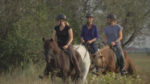 Drei Protagonistinnen reiten auf ihren Pferden durch die Natur.
