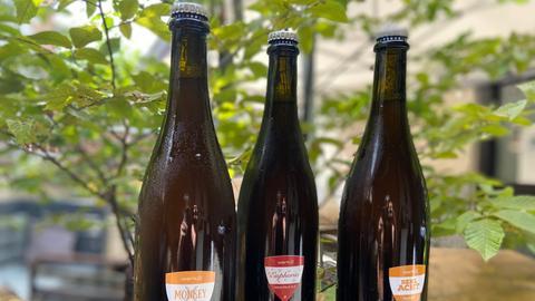"""Die Ratgeber, Serie: """"Hessische Manufakturen"""" (KW35), 3 dunkle Flaschen Craft-Beer"""