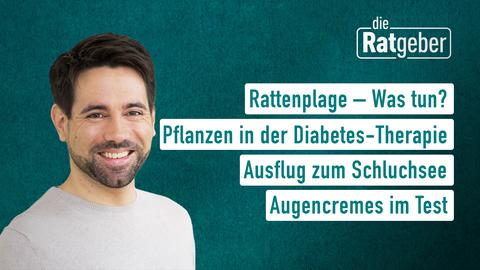 Rattenplage → Was tun, Pflanzen in der Diabetes-Therapie, Ausflug zum Schuchsee, Augencremes im Test